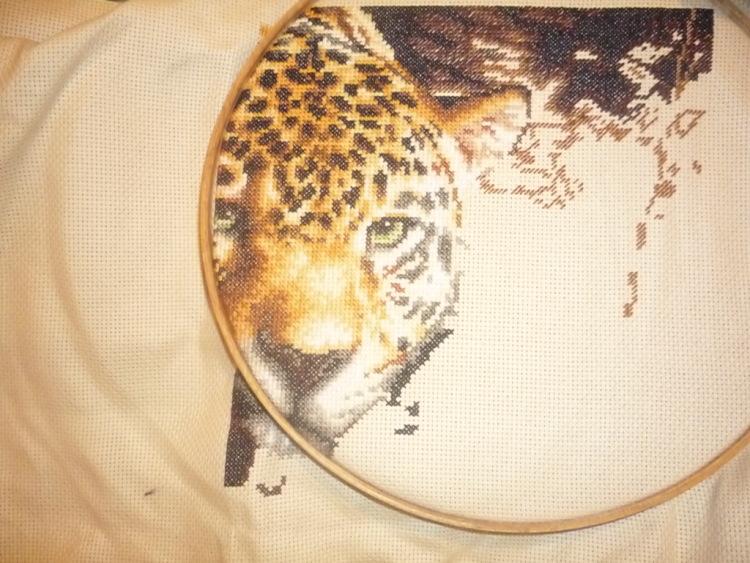 Вышивка леопард на отдыхе 51