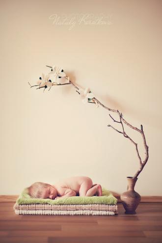 Детский фотограф Наталья Короткова - Москва